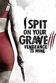 I Spit on Your Grave Vengeance is Mine (2015) เดนนรก ต้องตาย 3