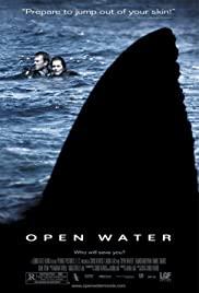 Open Water (2003) ระทึกคลั่ง ทะเลเลือด