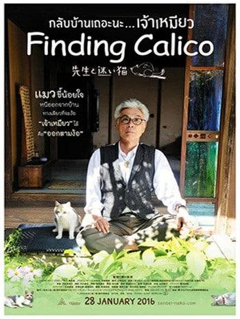 Finding Calico (2015) กลับบ้านเถอะนะเจ้าเหมียว
