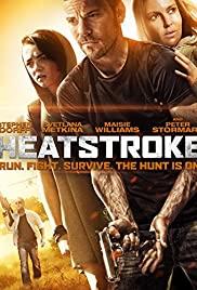 Heatstroke (2013) อีกอึดหัวใจสู้เพื่อรัก