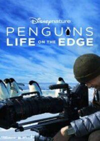 Penguins Life on the Edge (2020) Disney+ Hotstar